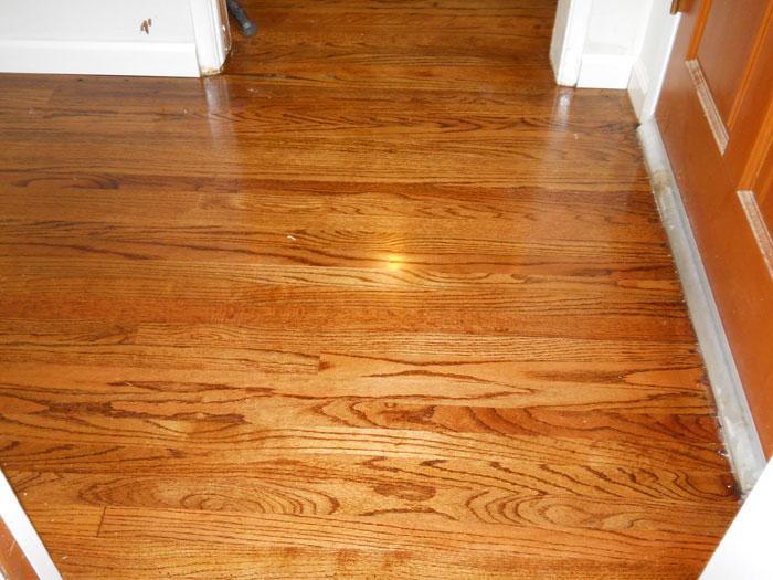SoCal Flooring Carpet Hardwood Floor After 6