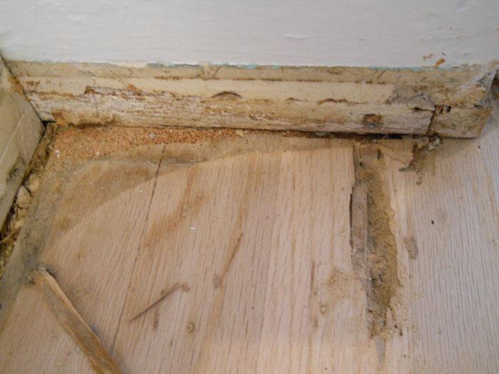 SoCal Flooring Carpet Hardwood Floor Before 3