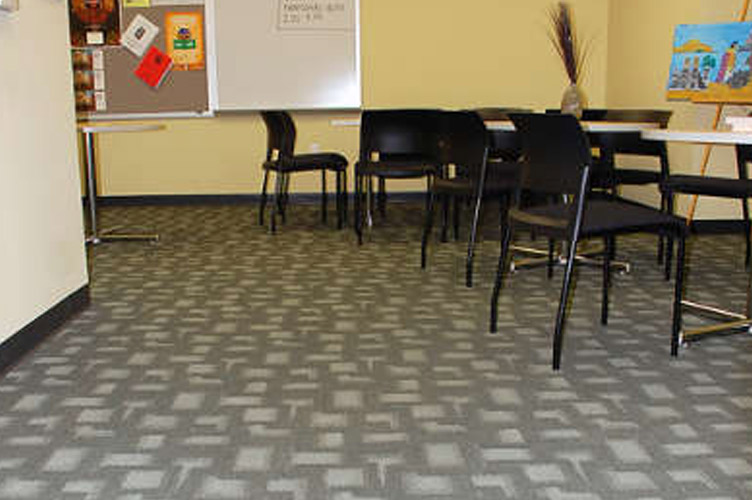 San Diego City College - Patterned commercial carpet in library
