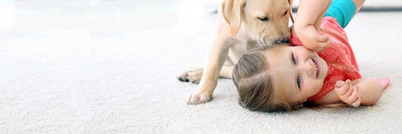 Stain Resistant Carpet